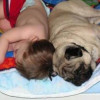 Baby Sleeping With Dog Picture Caption