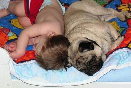 baby with dog sleeping picture caption